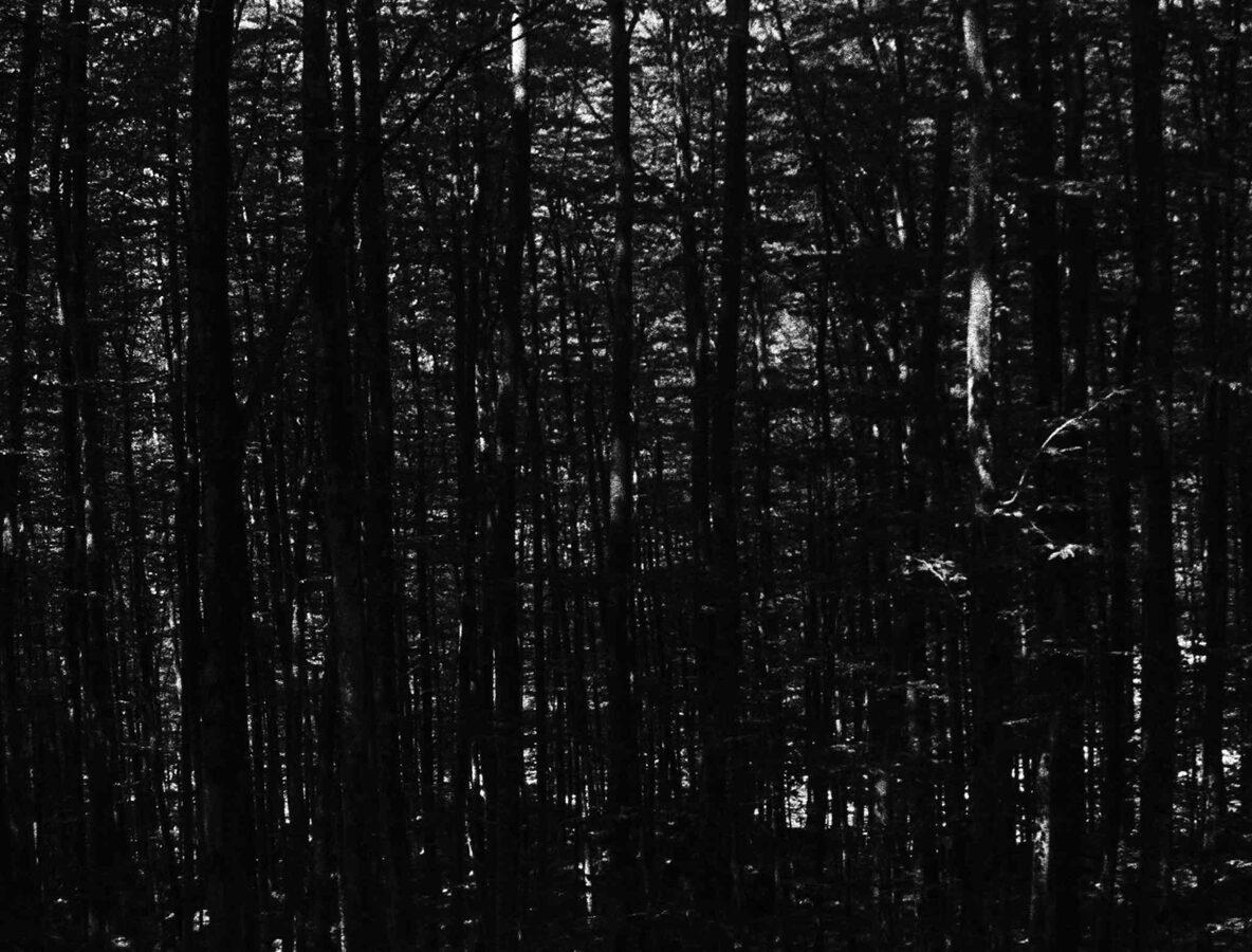 Monte Nero. A film by Karl Wratschko
